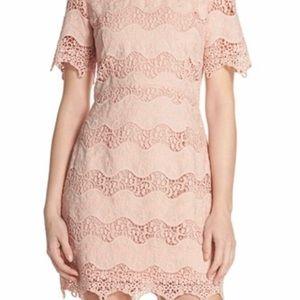 Chelsea28 Dresses - New Chelsea28 Lace Sheath Dress